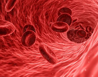 blood_cells